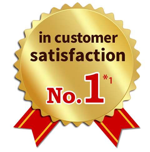 Ranked number 1 in customer satisfaction for data connection quality and stability.